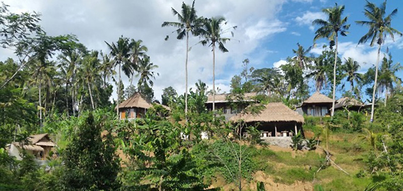 des maisons de bambou au coeur de la nature