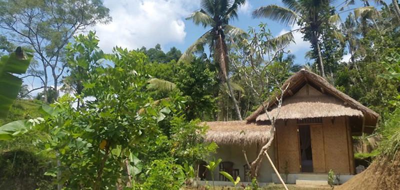 Maison d'hôtes à Bali, spiritualité et accompagnement personnel