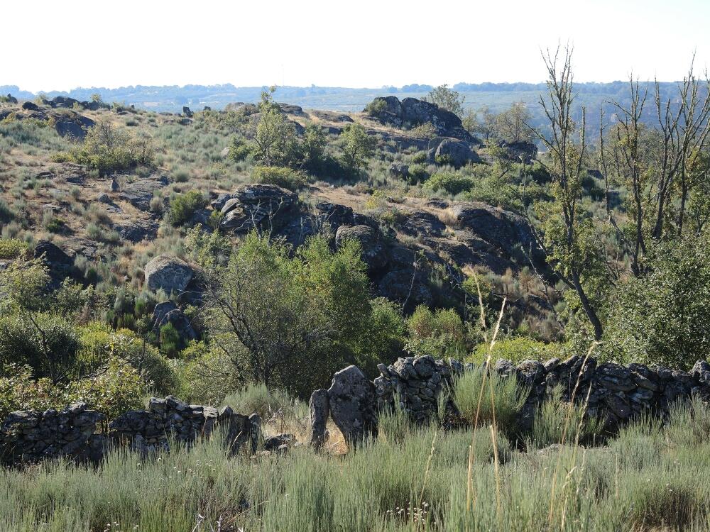 Ein überdimensionales Steingarten