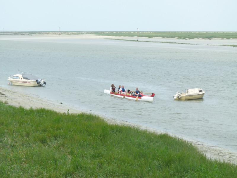 Les courses de canoës kayaks en Baie de Somme