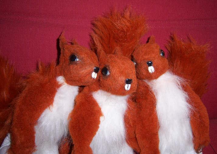Drei Eichkatzeln