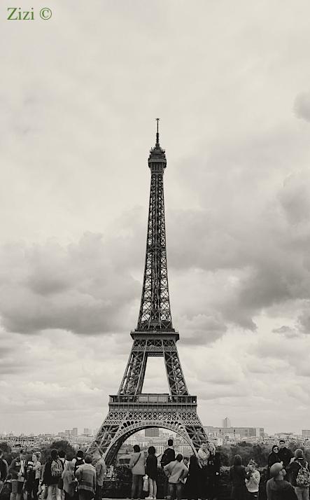 Paris - Zizi ©