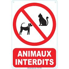 Animaux interdit dans l'établissement