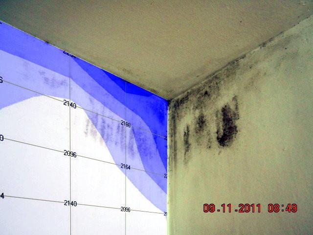 Feuchteverteilung im Bauteil ( Tauwasserschaden)