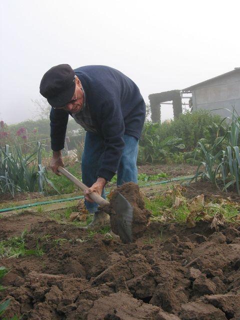 Jardinier au béchage