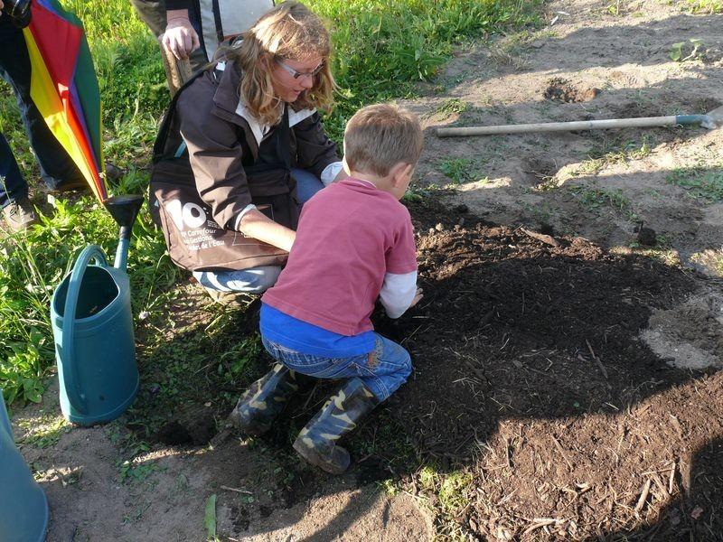 Culture en lasagnes : faire des trous de plantation remplis de terre