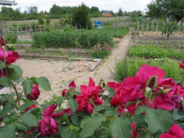 Jardin familial
