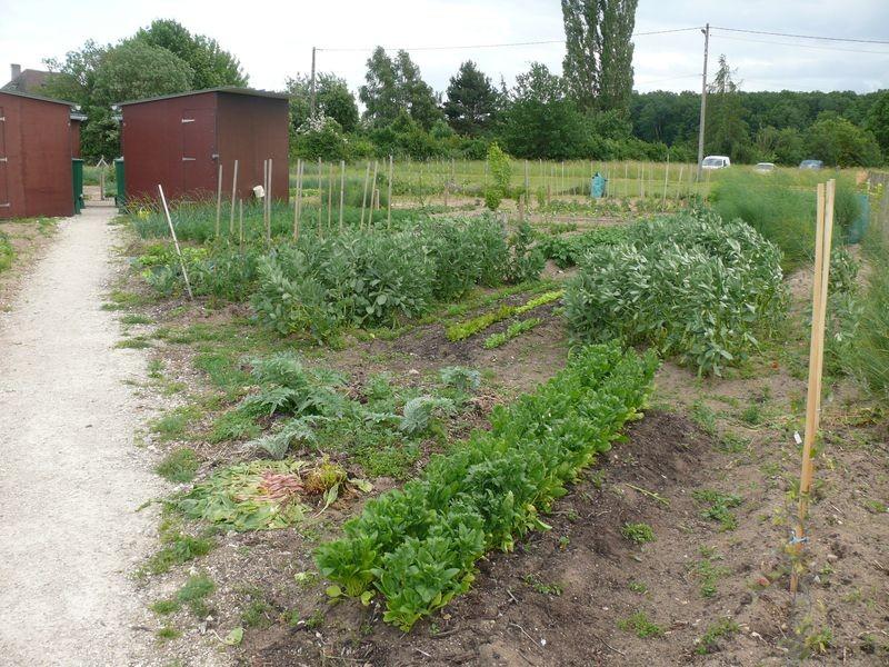 Jardin familial à Boigny sur Bionne