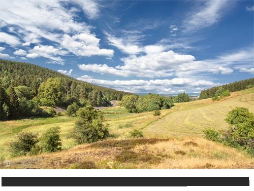 Reinbach-Quellwiesenbiotop bei Goslar/Nordberg Bilder, Fotos, Videos