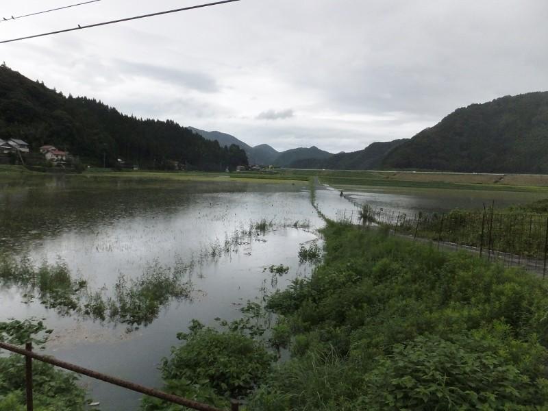 家の前からの夕方の田んぼの浸水状況