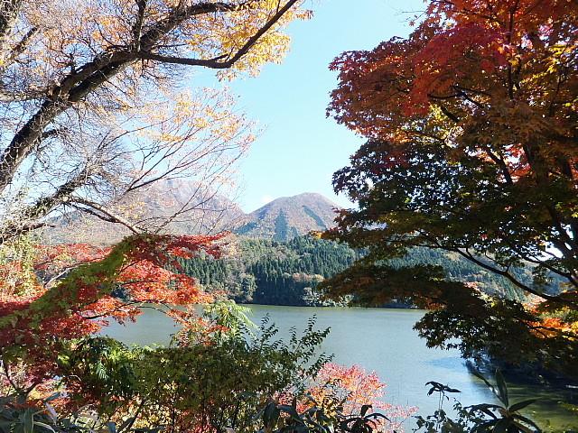 新雪の頂きと紅葉