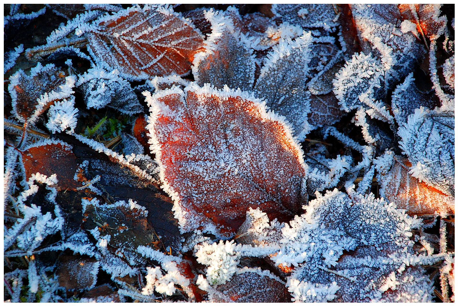 Väterchen Frost