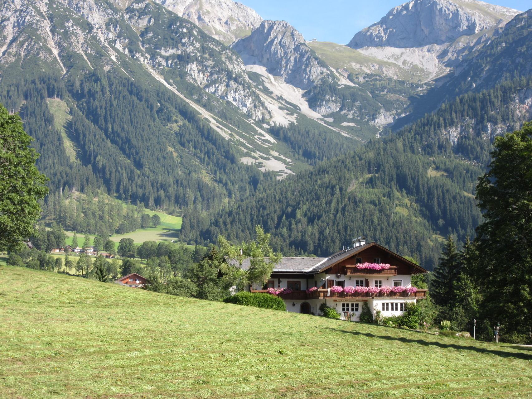 Haus Heidi umgeben von Almwiesen