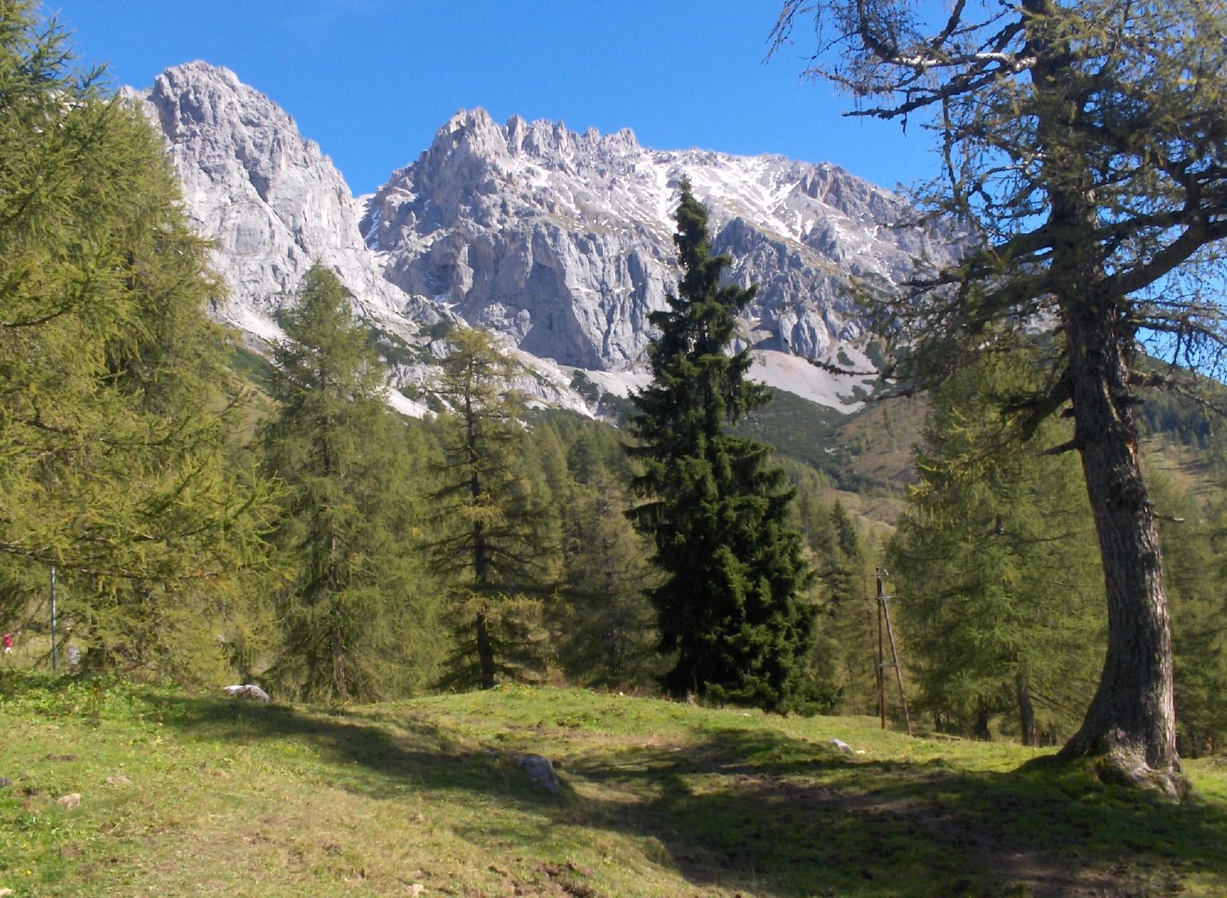 The high pastures under the Dachstein