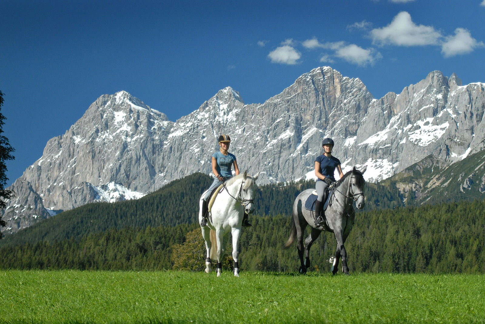 Horse riding on Ramsau plateau