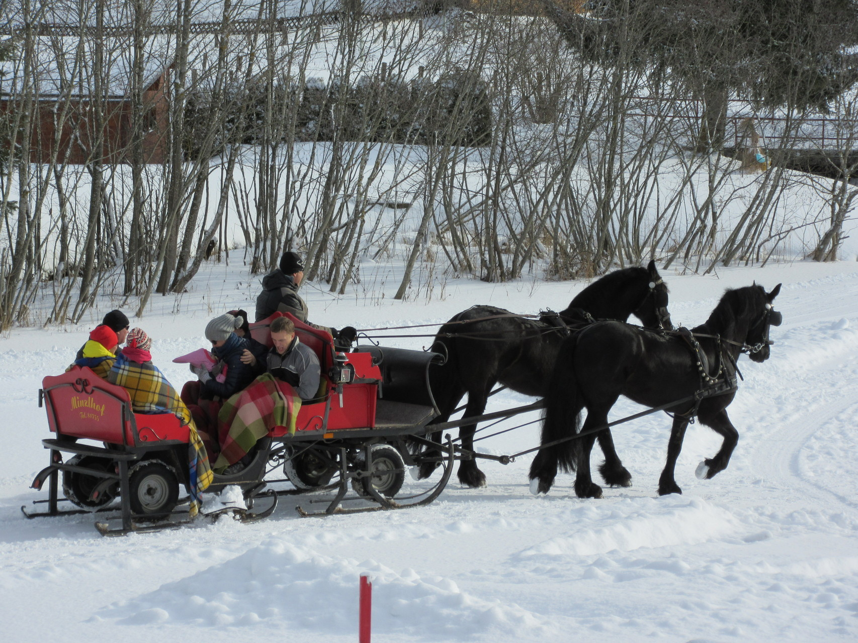 Horse sleigh rides pass next to the house in winter