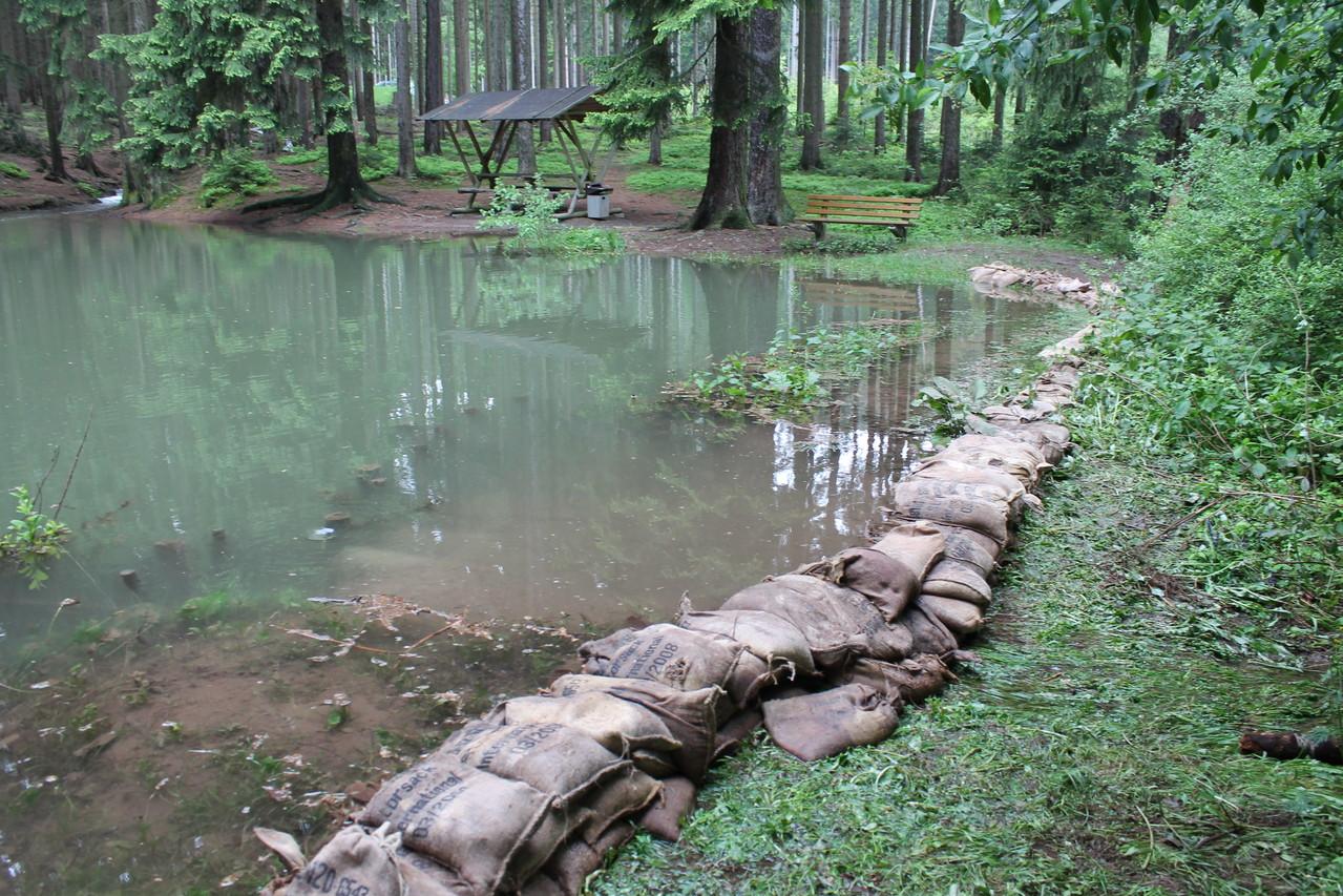 Ende Mai Anang Juni regnet es ungewöhnlich viel. Auch in Crawinkel gibt es einige kleine Hochwasser wie hier am Mayn´s Teich.