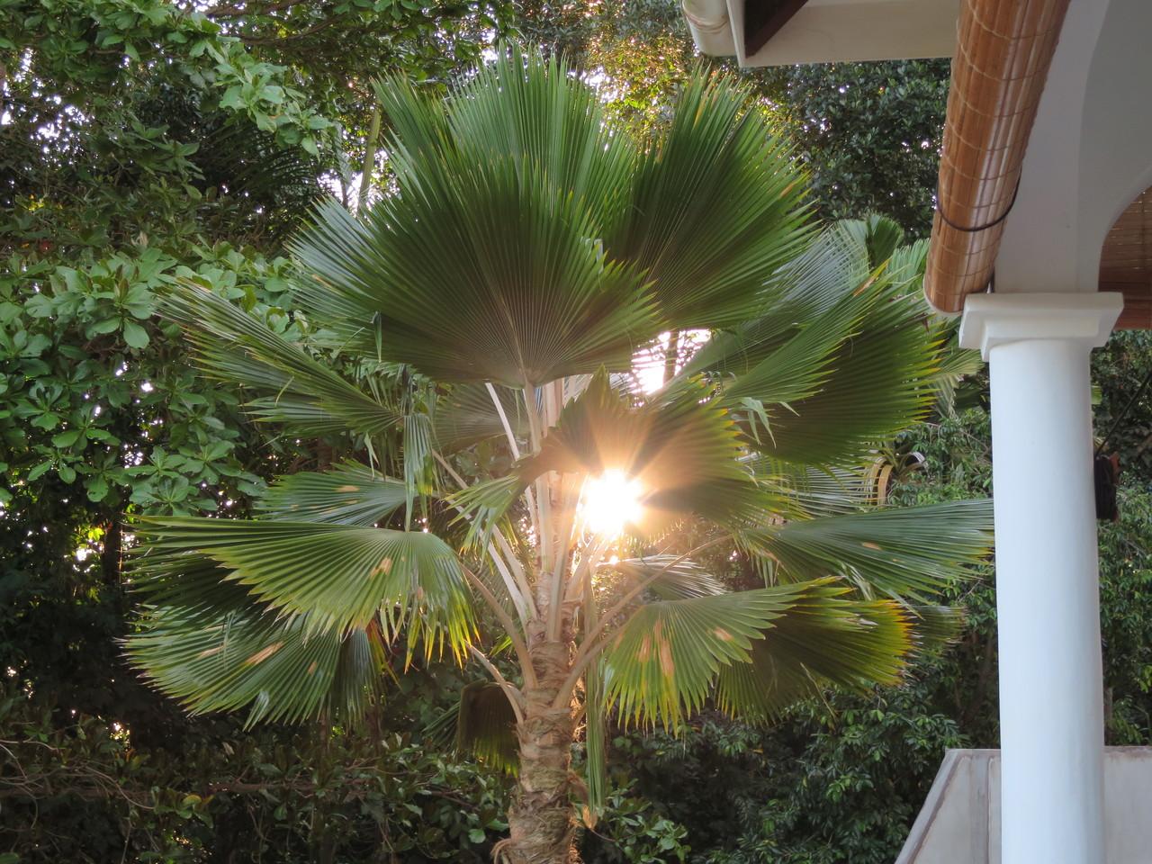 Umgebung Seychellen Haus guenstig mieten
