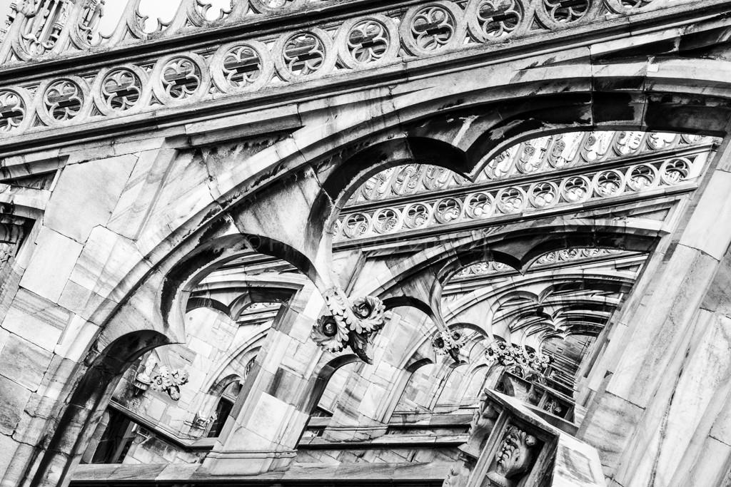 Sul tetto del Duomo di Milano