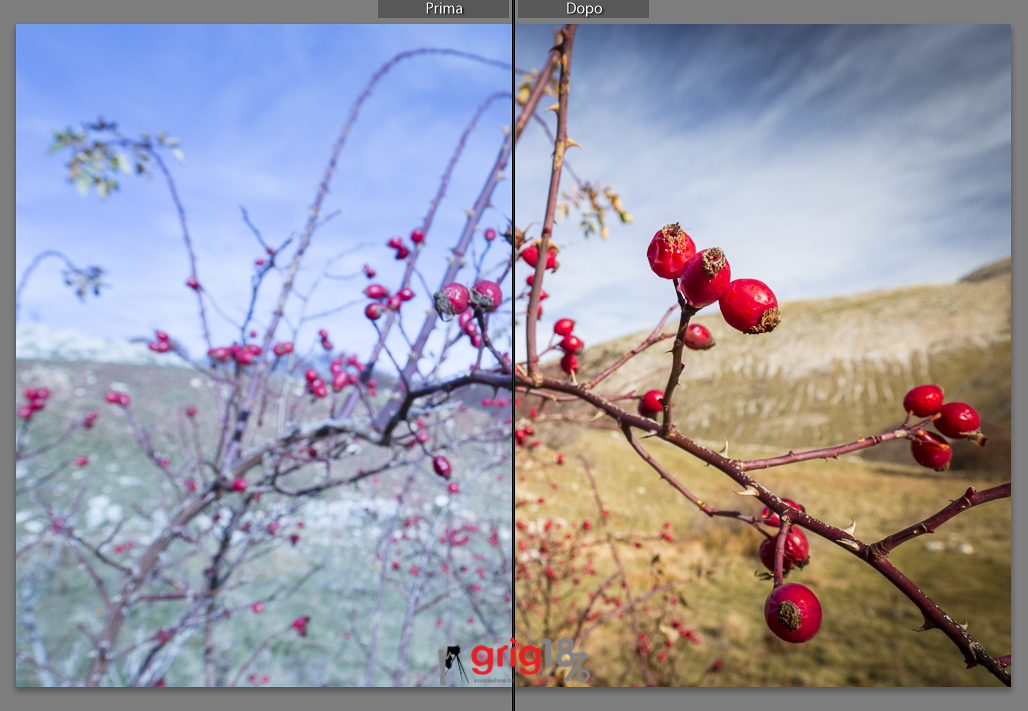 Immagine post-prodotta con Adobe Lightroom