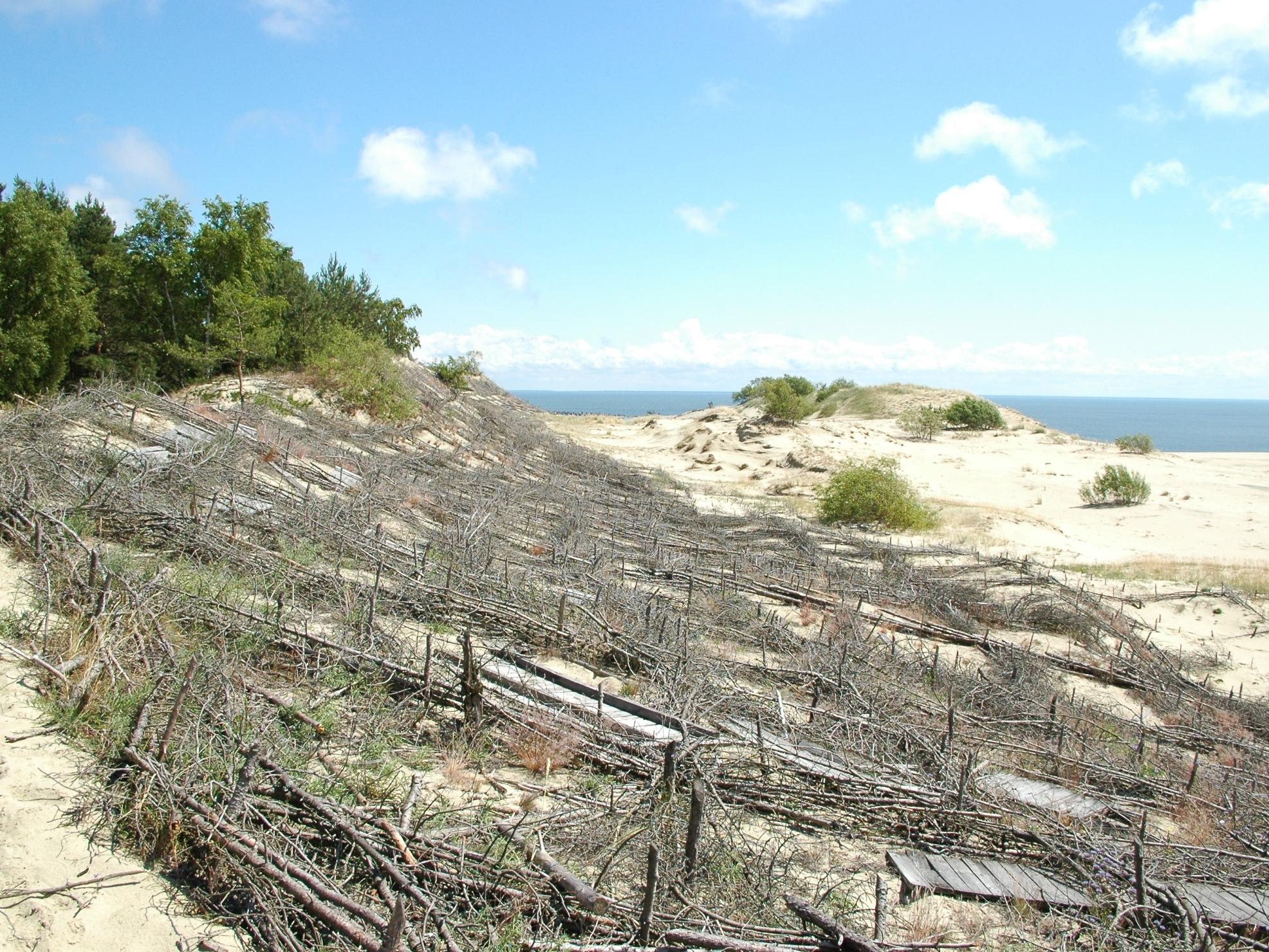 Dünenbefestigung unterhalb der Parnidis-Düne