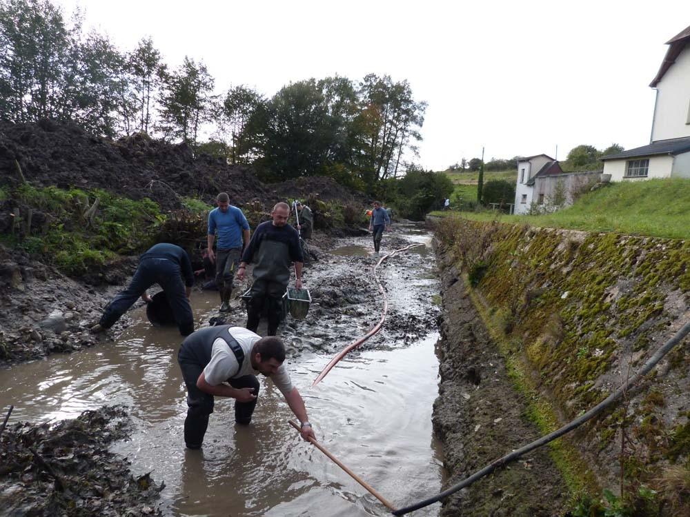 Pêche de sauvetage pompage des fosses et récupération des poissons