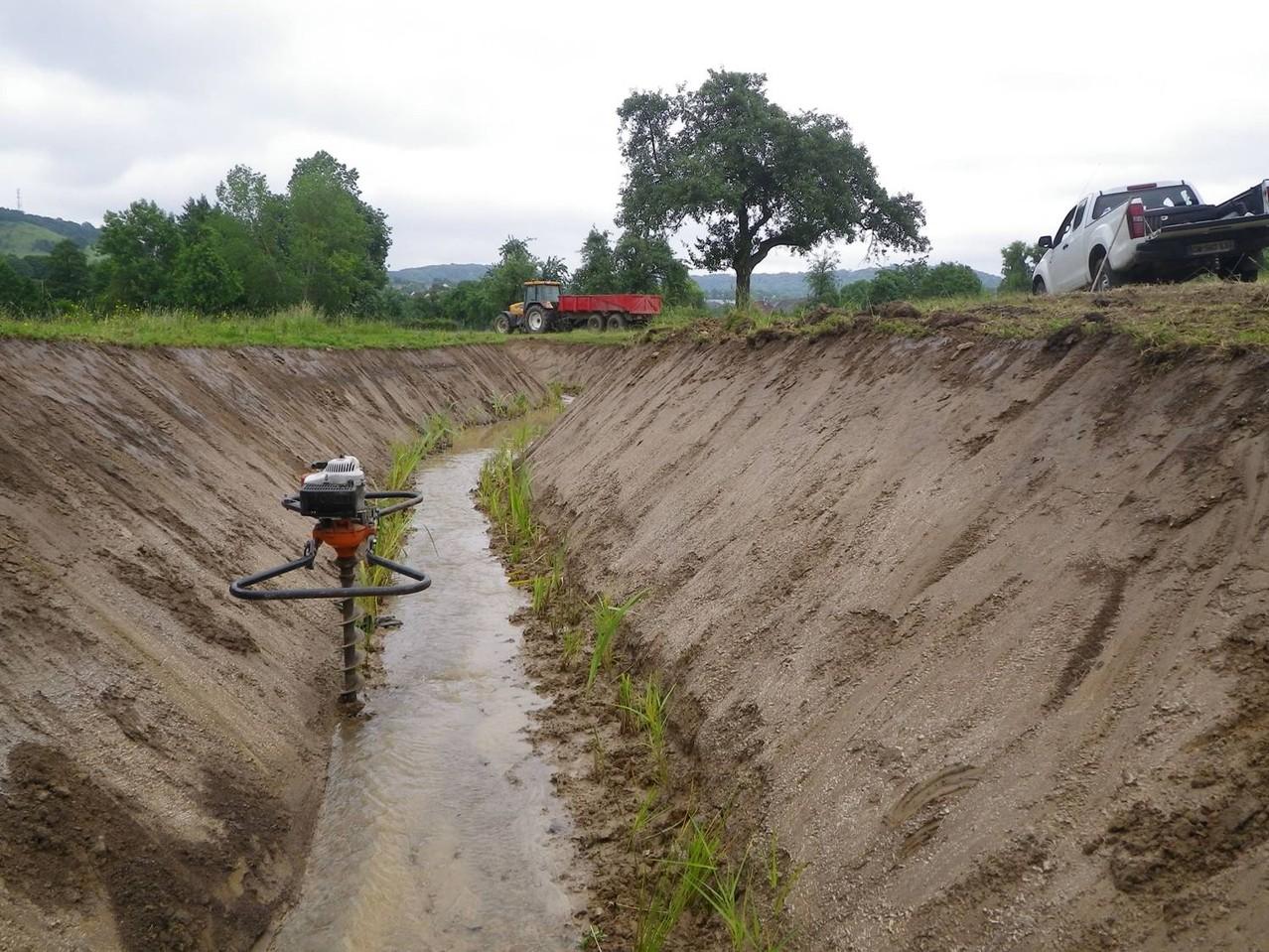 Plantation des Hélophytes à la tarière (outils permettant de percer le sol ou des matériaux comme le bois)
