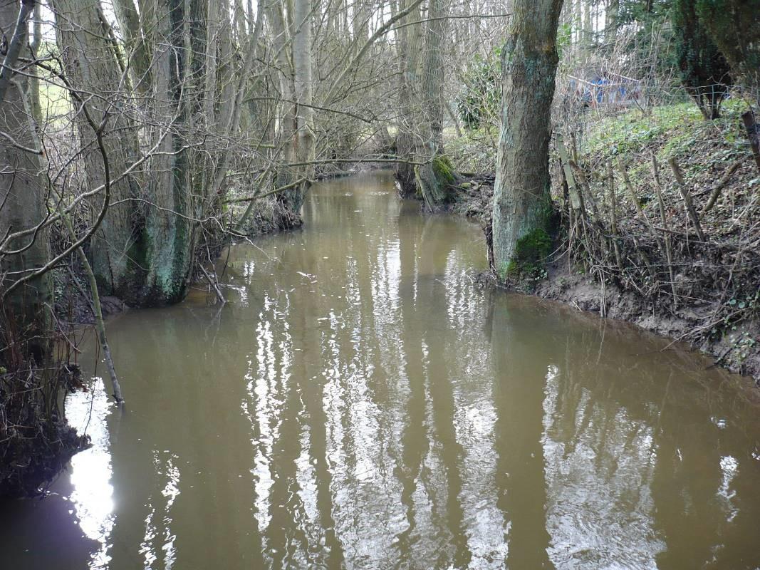 Ennoiement du cours d'eau en amont immédiat de l'ouvrage