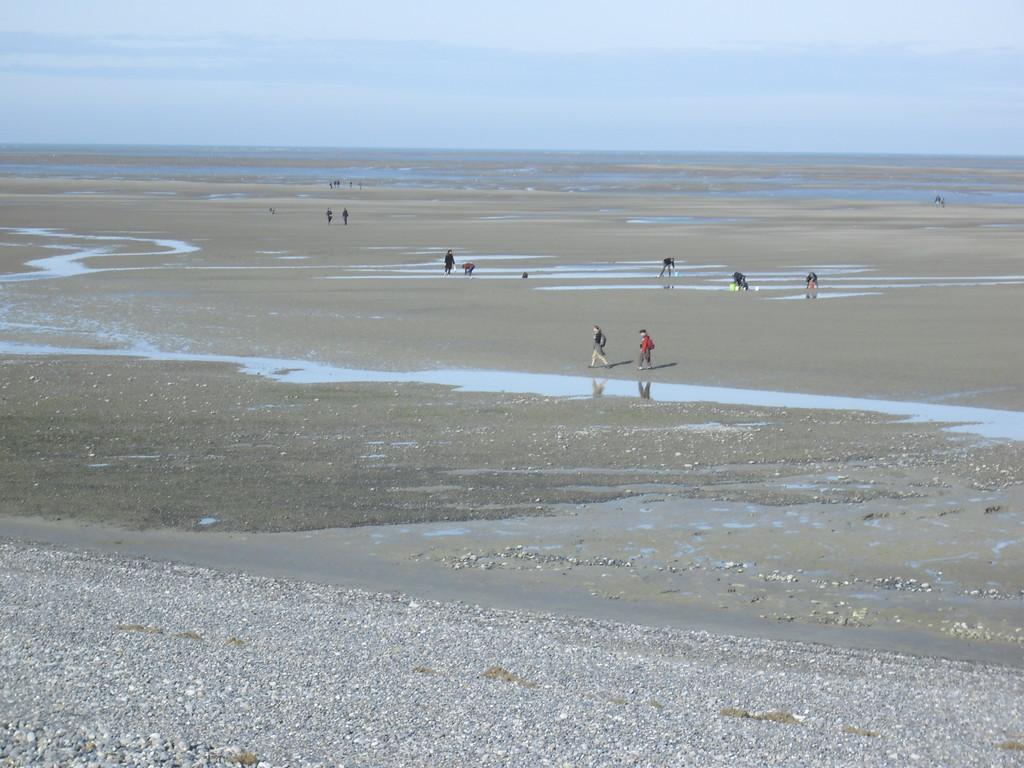 Plage de Cayeux-sur-mer à marée basse