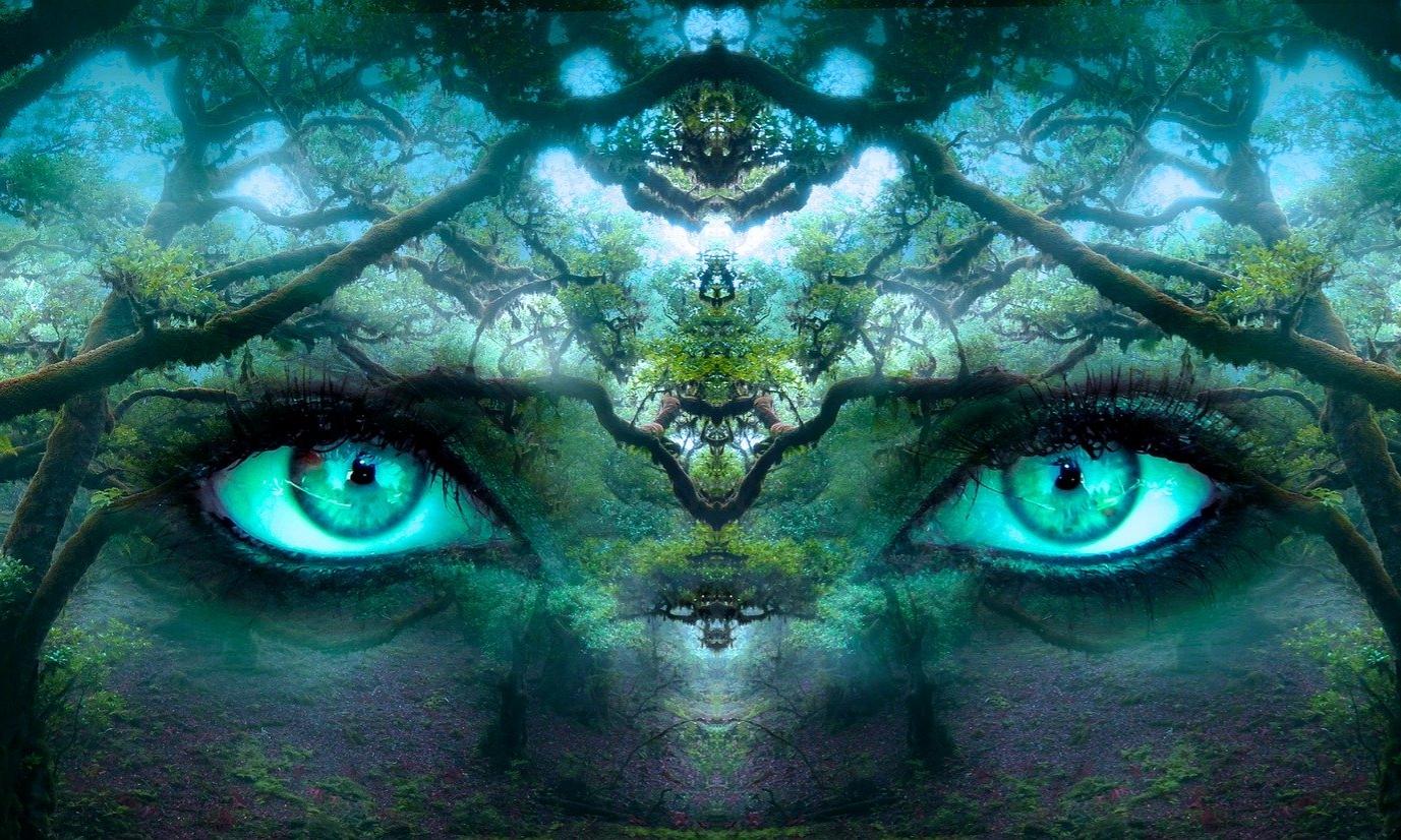 Die Erde, auch Terra oder Gaia genannt, ist unsere Mutter.