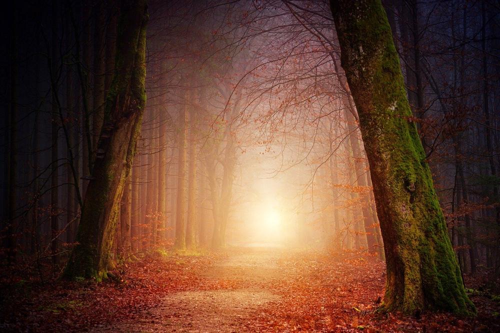 Camminare al Sole
