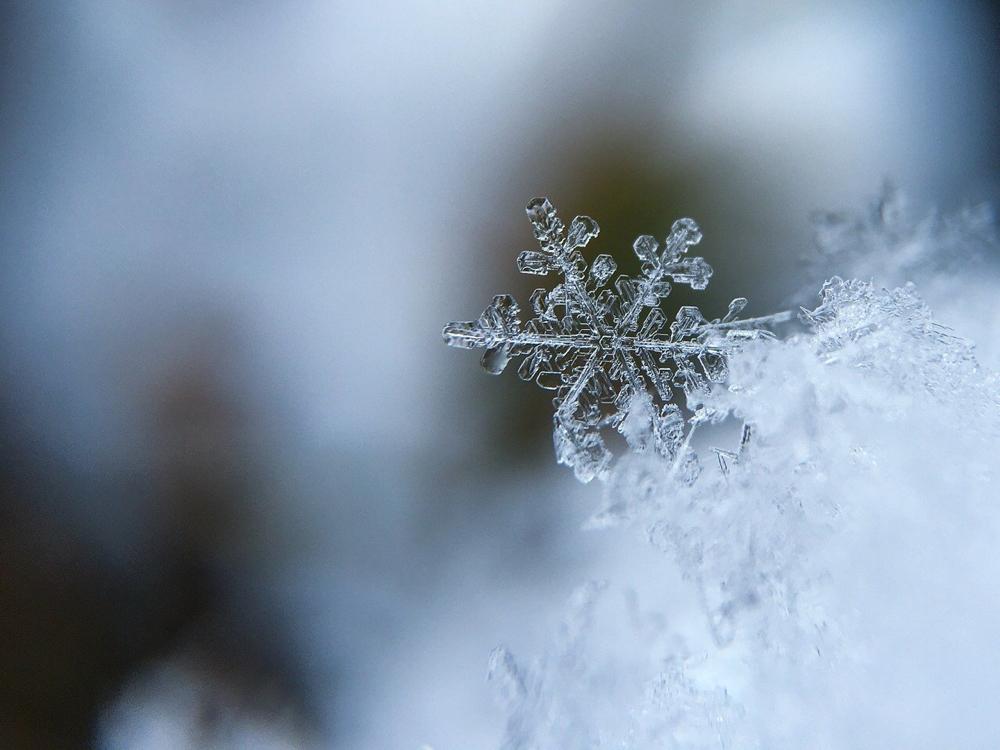 L'osso va preserva come un fiocco di neve alla luce del sole