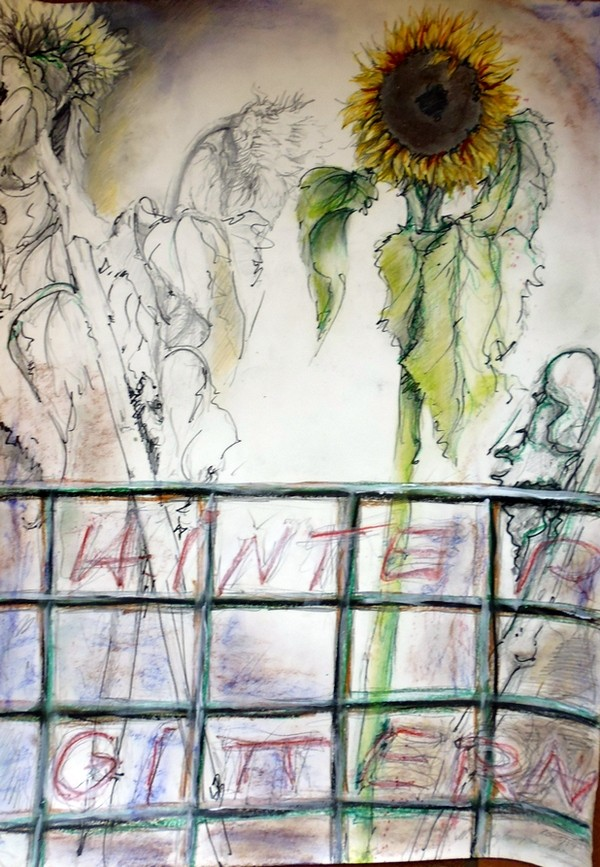 Hinter Gittern - so wachsen diese Sonnenblumen in einem imaginären Garten. 70 x 50 cm, 2003/13.