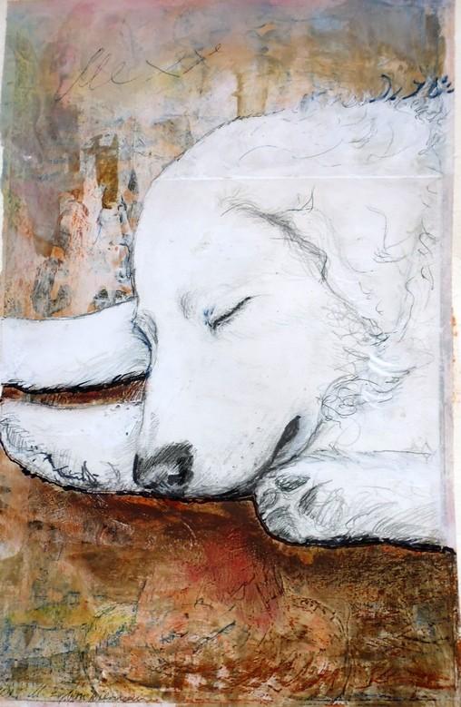 Bild Schlafender Hirtenhund