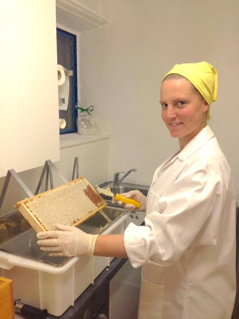 Im Schleuderraum beim Honigwaben entdeckeln