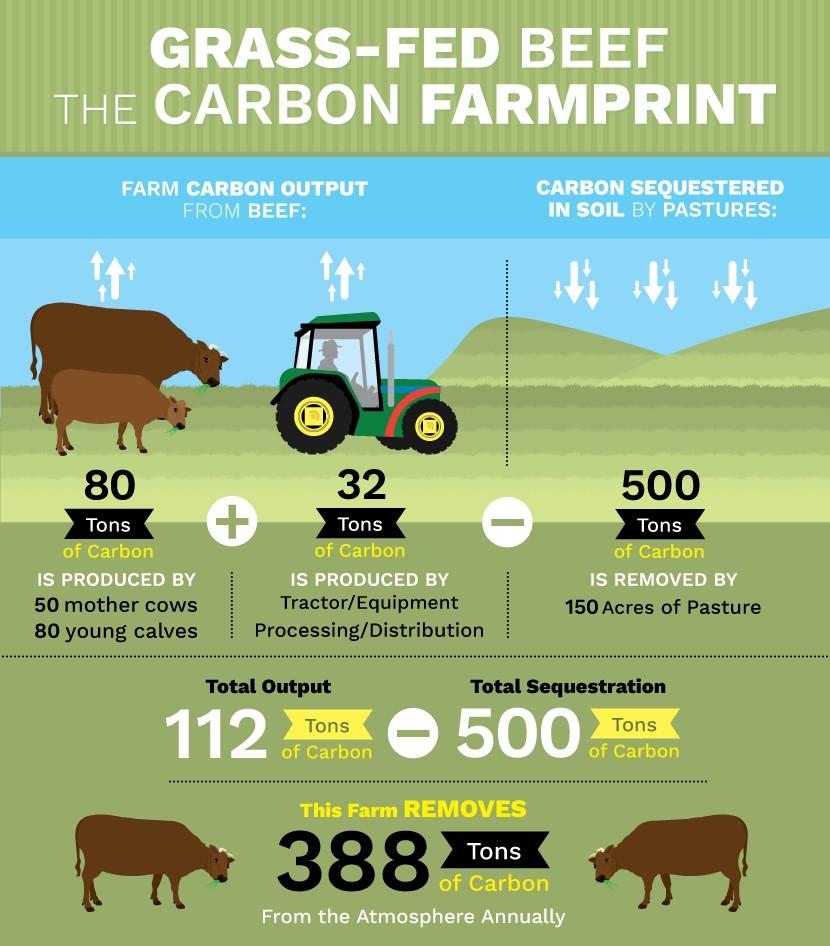 bénéfices de la viande à l'herbe sur l'environnement ferme biologique de la Millanchère