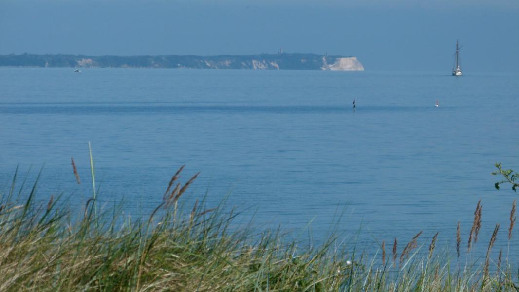 Blick aus der Ferienwohnung auf das Kap Arkona und die Ostsee