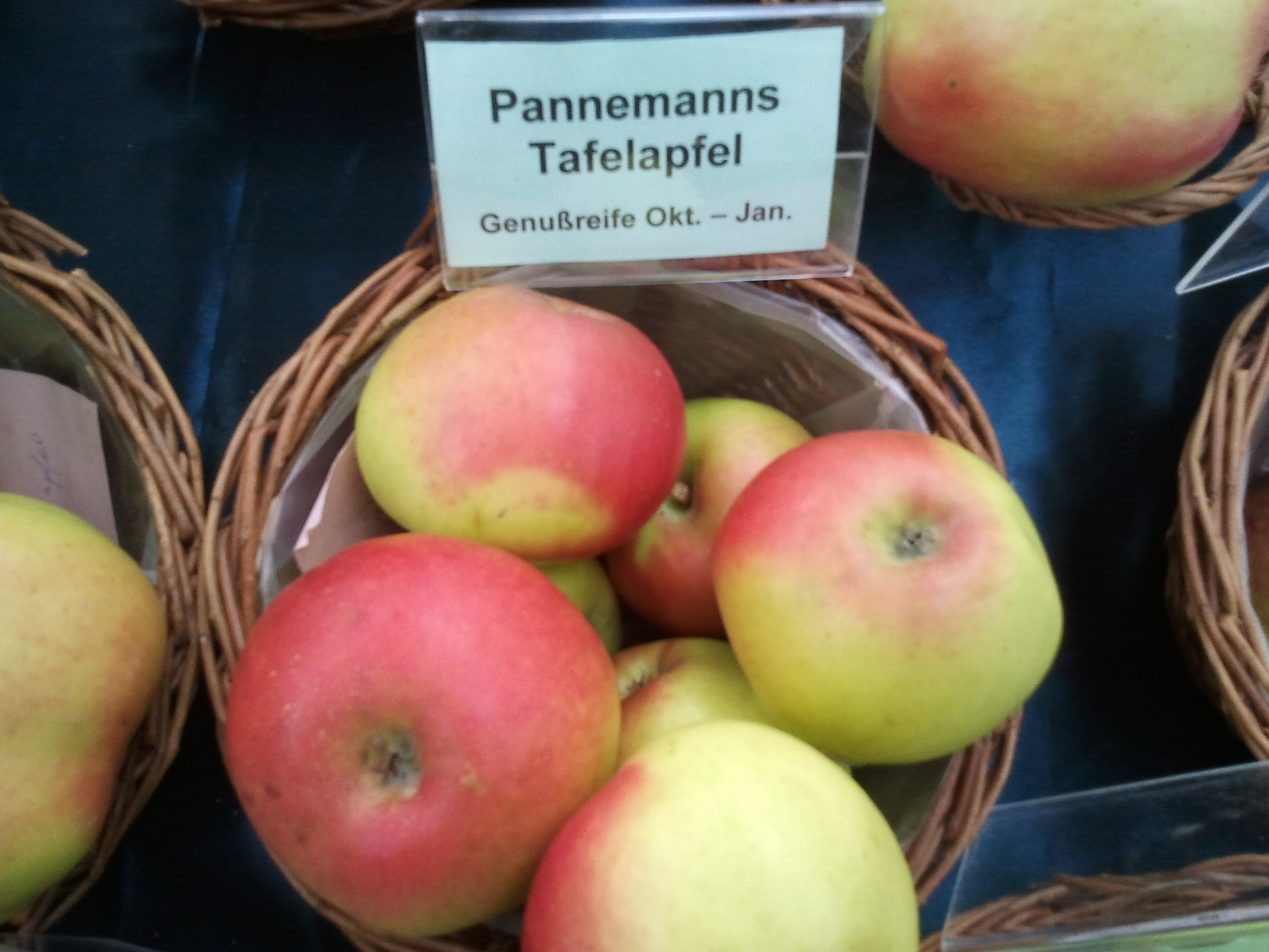 Apfel Pannemanns Tafelapfel
