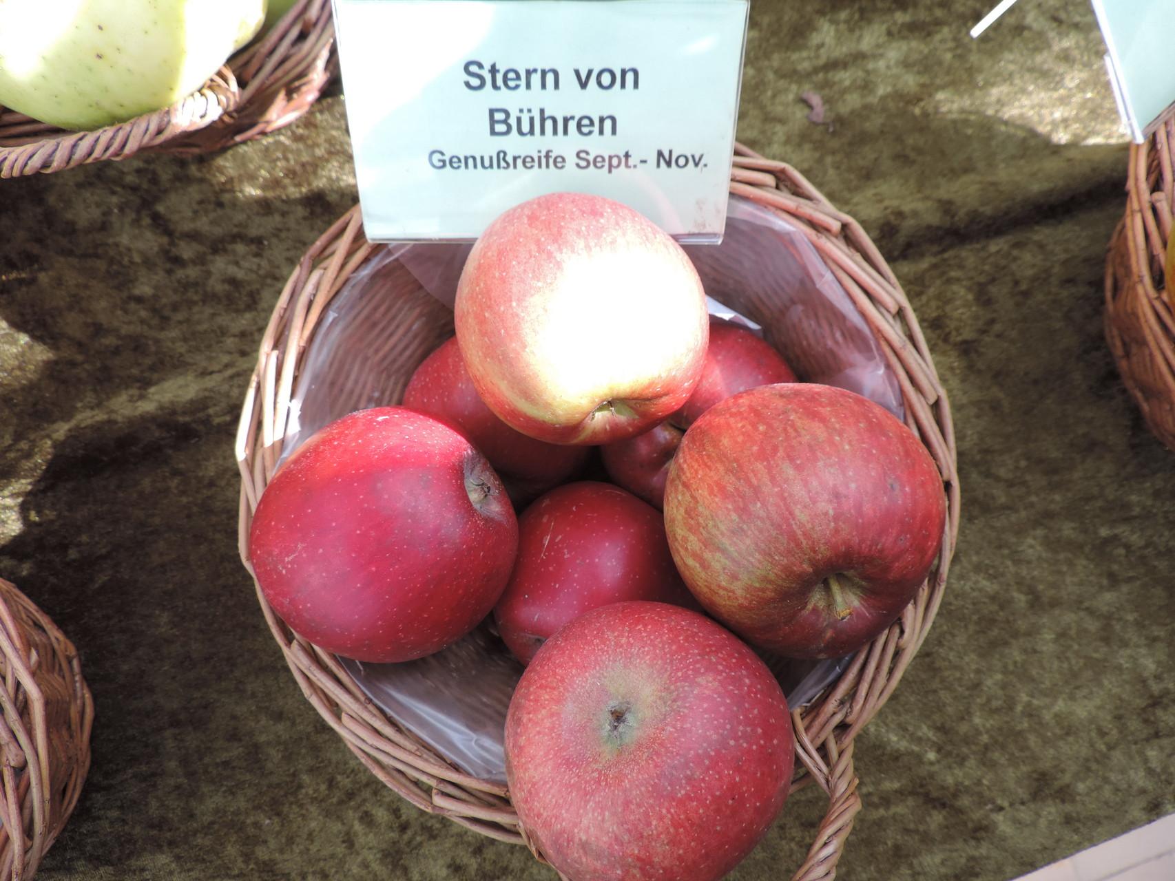 Apfel Stern  von Bühren