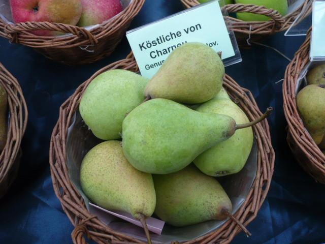 Birne  Köstliche vo Charneau