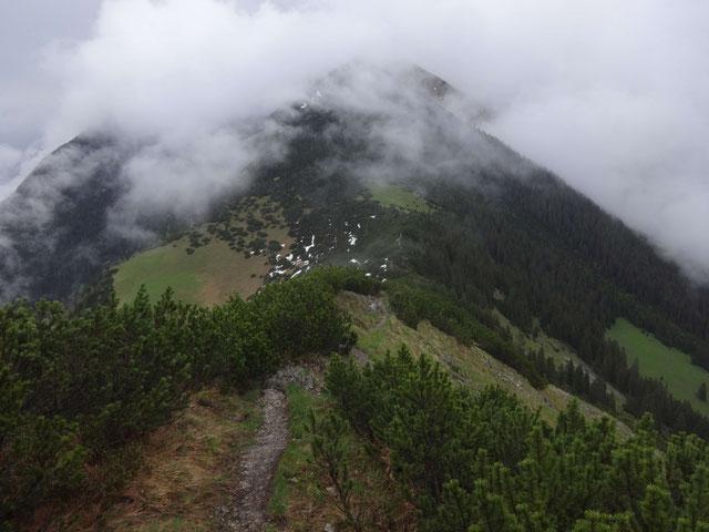 #9 Estergebirge im Nebel