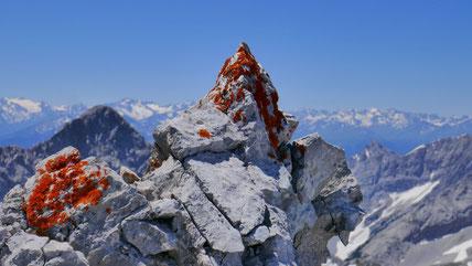 Hochkanzel - Brantlspitze - Gamskarspitze - Überschreitung des südlichen Rosslochkamms