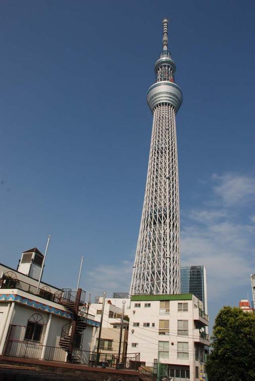 自立式の電波塔としては世界最高の高さ