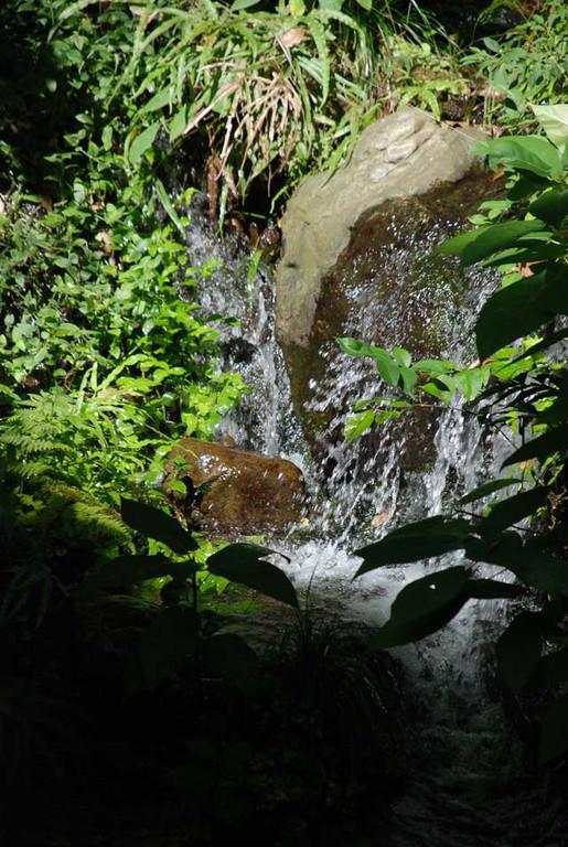 崖を利用した屋敷には滝を設けて水みちをつくっている