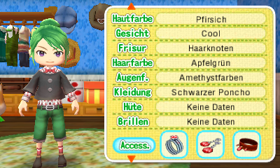 Accessoires - Harvest Moon Forever