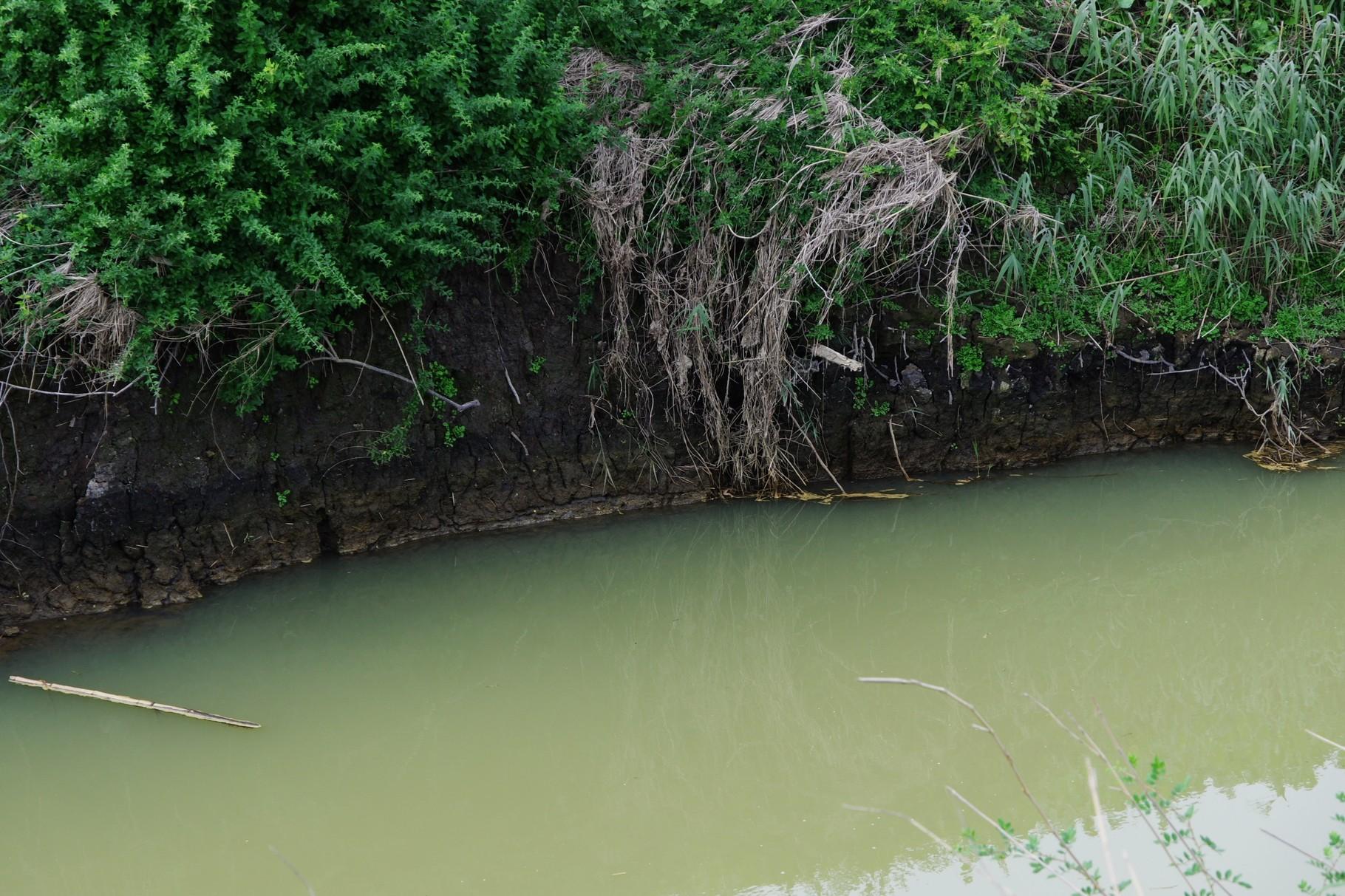 河道の洗掘もおきています
