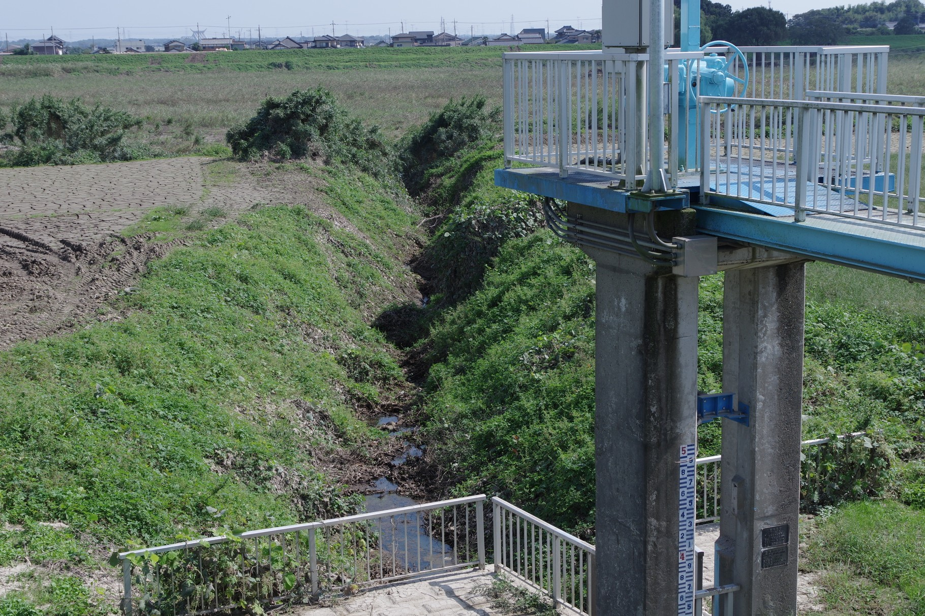 排水門の川表側