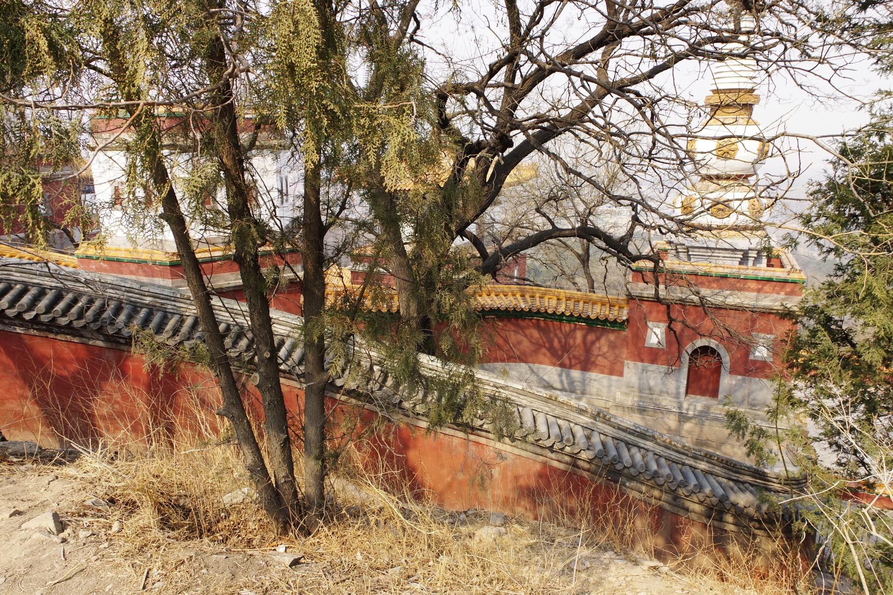 チベット仏教建築 「四大部州」