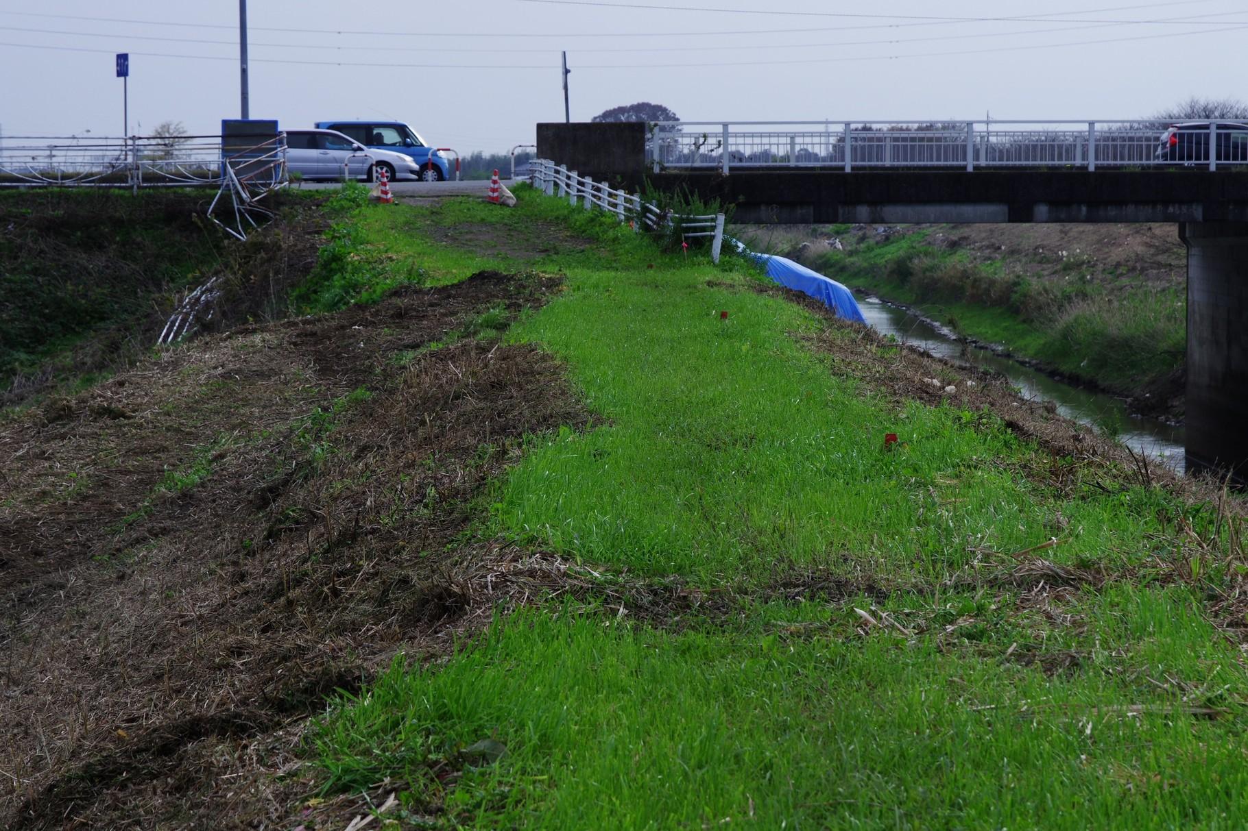 南側を渡河する国道354号線