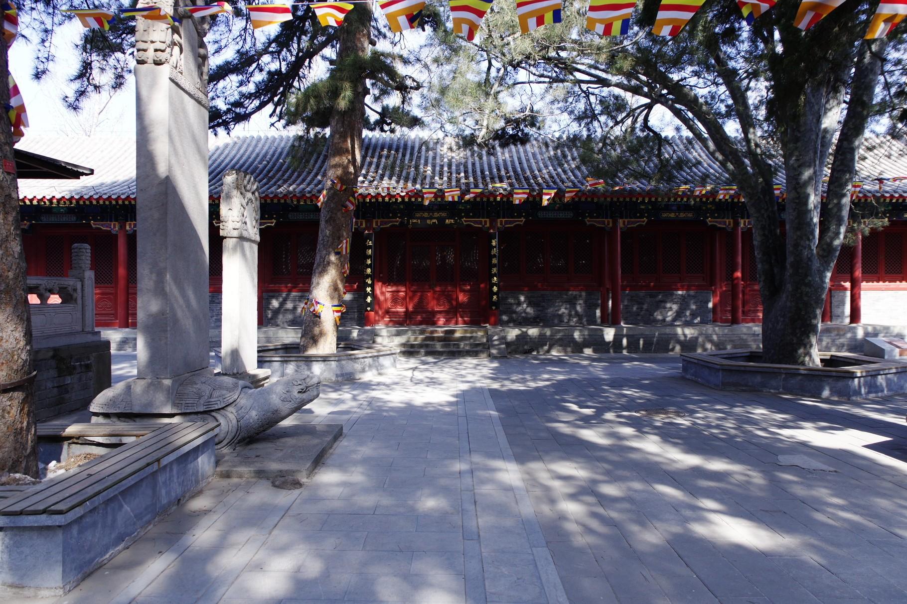 左右(南北)に建つ五百羅漢堂